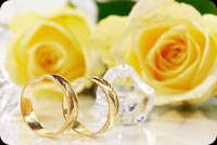 Yellow Roses, Gold Rings Happy Wedding Anniversary Background