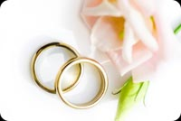 Pastel Pink Rose Wedding Anniversary Rings Background