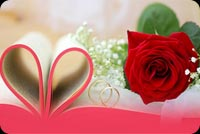 Rose, Love Rings, Happy Wedding Anniversary Background