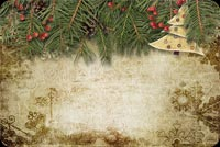 Vintage Christmas Fir Tree Background