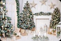 White Christmas Decor Background