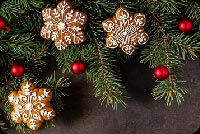 Christmas Branches Decoration Background