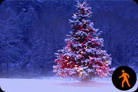 Animated Snowing Christmas Tree Background