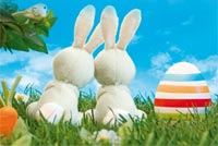 Easter email backgrounds. Couple Bunny Watching Clear Sky