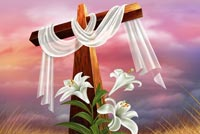 Easter Flowers & The Cross Background
