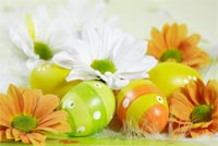 Easter email backgrounds. Easter Holiday