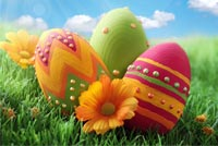 Colorful Easter Eggs & Flowers Background