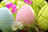 Easter email backgrounds. Easter Eggs Hunt