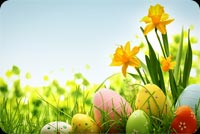 Easter email backgrounds. Colorful Easter Eggs