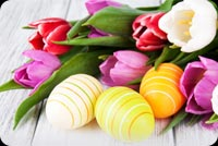 Colorful Easter Flowers Tulips, Eggs Decoration Background