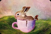 Cute Bunny In The Cup Background