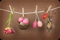 Hanging Brown Basket Eggs, Bunny & Flower Background