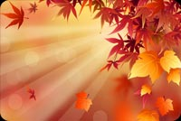 Fall autumn email backgrounds. Fall Autumn Leaves