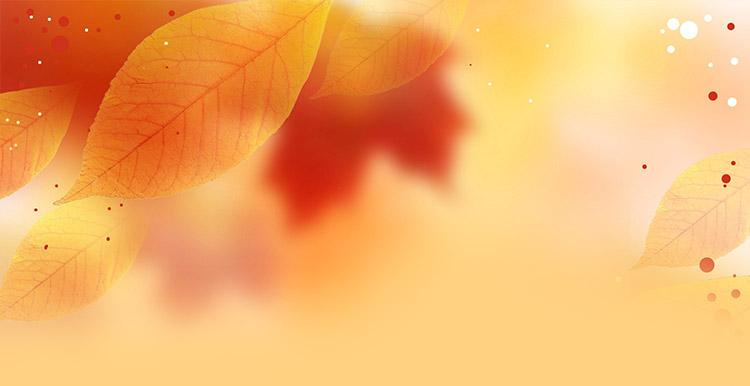 fall autumn email stationery stationary fall leaves autumn theme