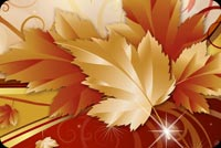 Cool Autumn Floral  Background