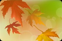 Fall autumn email backgrounds. Endless Happiness This Autumn