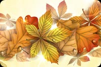 Fall autumn email backgrounds. A Beautiful Autumn Wish...