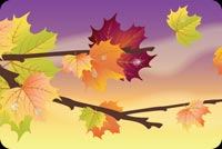 Fall autumn email backgrounds. Beautiful Autumn