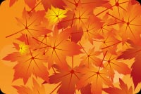 Fall autumn email backgrounds. Autumn As Special As You Are