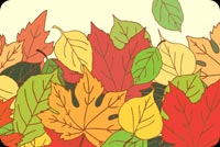 Fall autumn email backgrounds. Share The Magic Of Autumn.