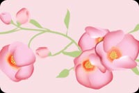 Pretty Flowers Background