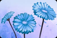 Flower Art Blue Background