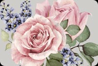 Beautiful Watercolor Rose Flower Background
