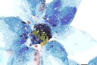 Blue Art Flower Background