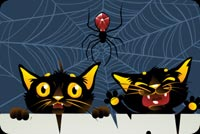 Black Cats & Spider Halloween Background