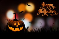 Halloween email backgrounds. Halloween Pumpkins & The Bats