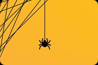 Spider Trick Or Treat Background
