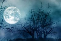 Halloween email backgrounds. Moonlight
