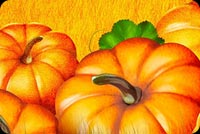 Halloween email backgrounds. Pumpkin Field