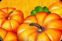 Pumpkin Field Background