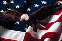 July 4th email backgrounds. Eagle USA Flag
