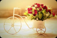 Love email backgrounds. Romantic Roses Bicycle