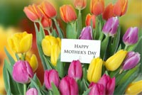 Mothers day email backgrounds. Best Mom In The World