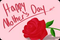 Mothers day email backgrounds. Beautiful Rose For Mother