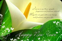 New Year With Lovely Wish Background