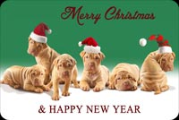 Cute Dogs Happy New Year Background