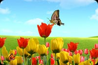As Spring Arrives Background