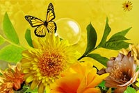 Spring Garden Butterfly & Bird Background