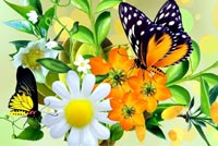 Wonders Of Spring Background