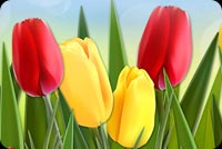 Cheerful Tulips Background
