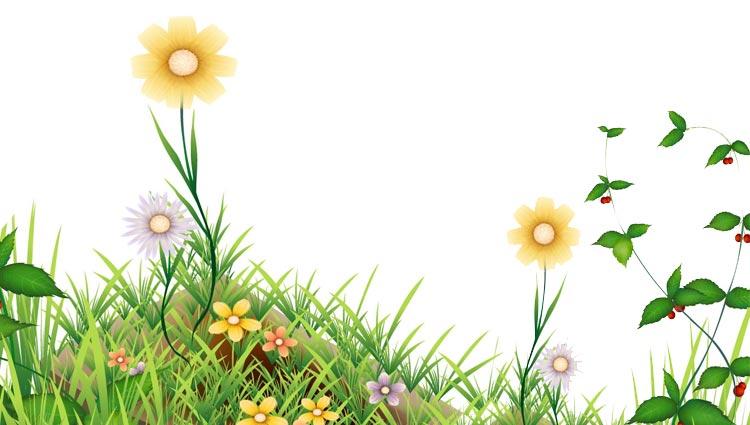 spring email stationery  stationary   bloom spring