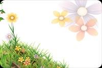 Bloom Spring Background