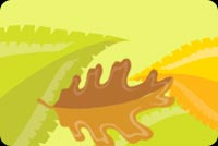 Thanksgiving email backgrounds. Autumn Leaves