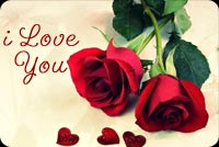 Valentines day email backgrounds. I Love You - Roses & Hearts