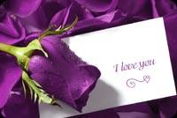 Purple Love Greeting Background