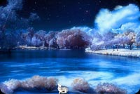 Winter Lake At Night Background